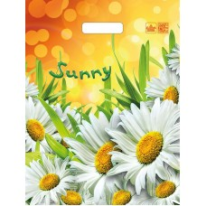 Букет хризантем, Винтаж, Клубничный шоколад, Композиция, Летние ромашки, Мой Рим,  Нарцисс 31*40 ламинат 60 мкр
